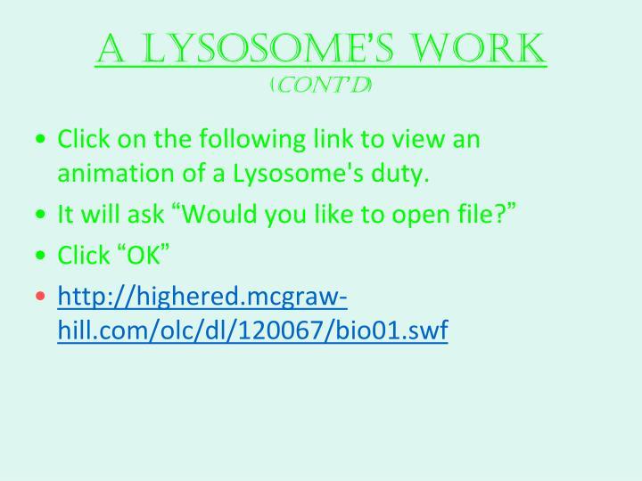 A Lysosome
