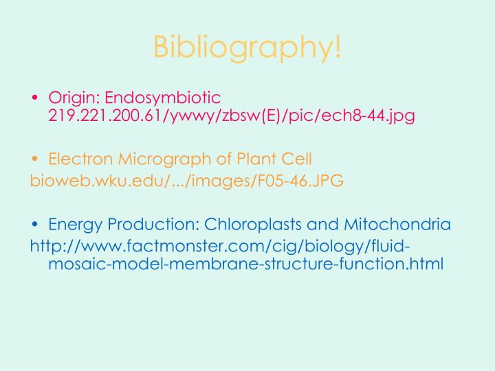 Bibliography!