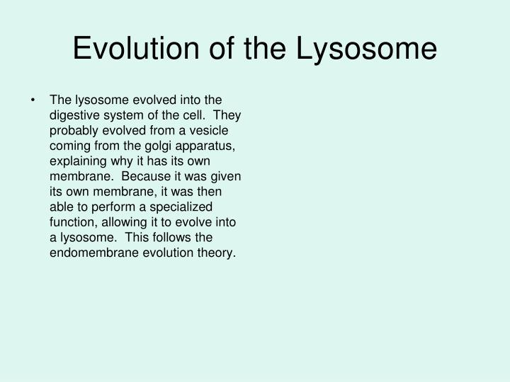 Evolution of the Lysosome