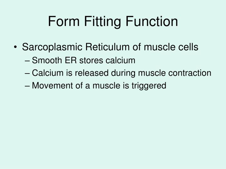 Form Fitting Function