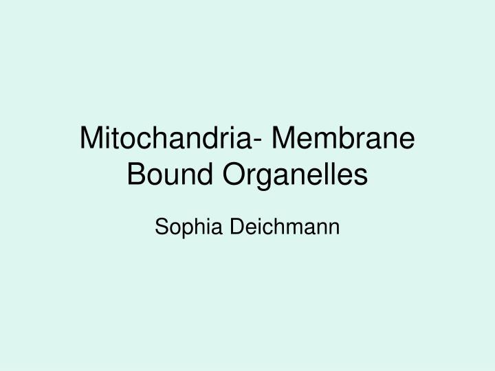 Mitochandria- Membrane Bound Organelles