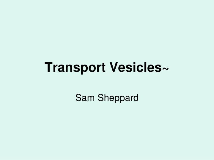 Transport Vesicles~