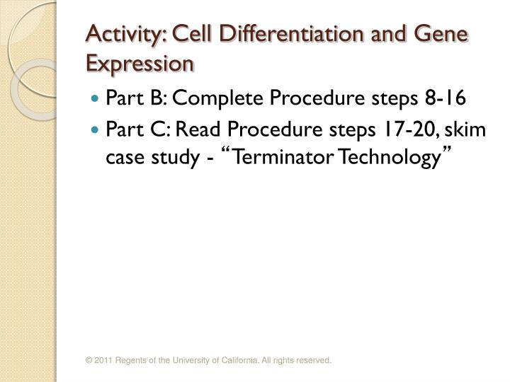 Activity: Cell Differentiation and Gene Expression