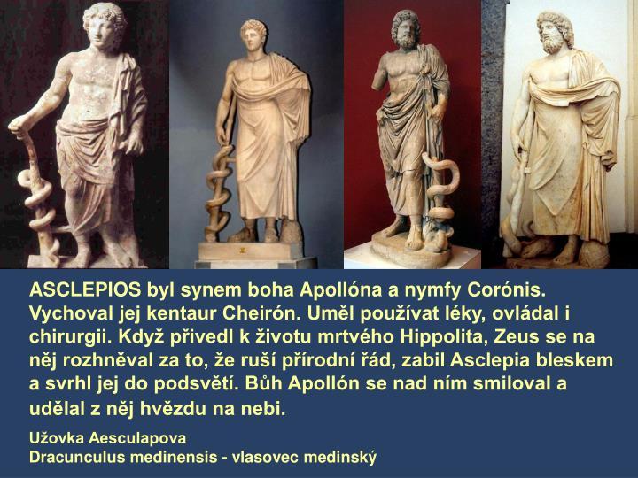 ASCLEPIOS byl synem boha Apollóna a nymfy Corónis. Vychoval jej kentaur Cheirón. Uměl používat léky, ovládal i chirurgii. Když přivedl k životu mrtvého Hippolita, Zeus se na něj rozhněval za to, že ruší přírodní řád, zabil Asclepia bleskem a svrhl jej do podsvětí. Bůh Apollón se nad ním smiloval a udělal z něj hvězdu na nebi.