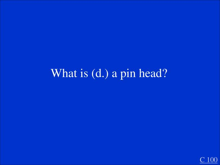 What is (d.) a pin head?