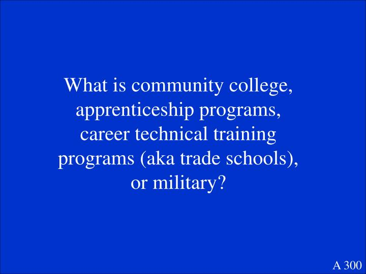 What is community college, apprenticeship programs, career technical training programs (aka trade schools), or military?