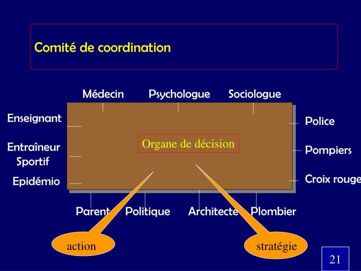 Comité de coordination