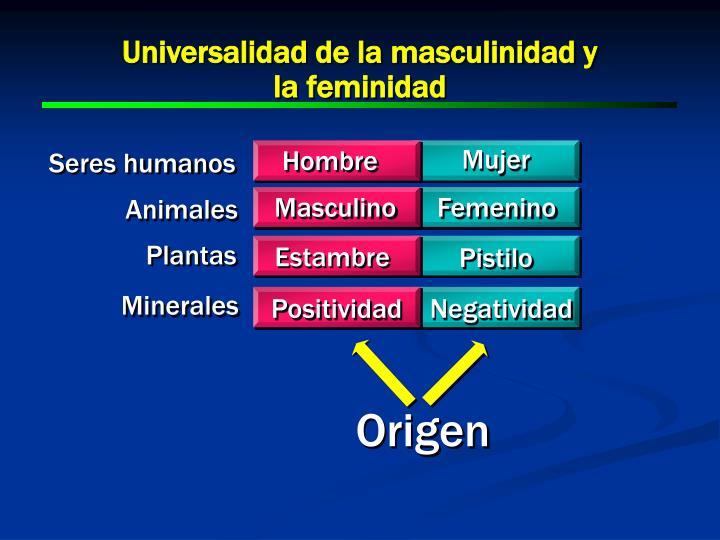 Universalidad de la masculinidad y