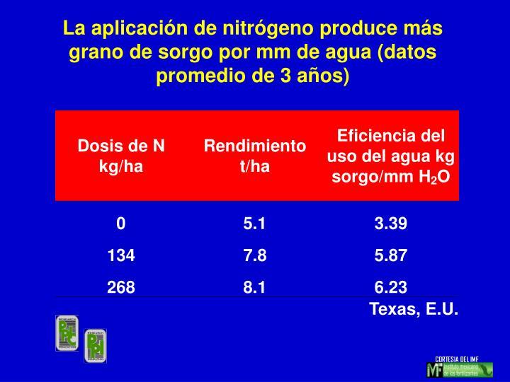 La aplicación de nitrógeno produce más grano de sorgo por mm de agua (datos promedio de 3 años)