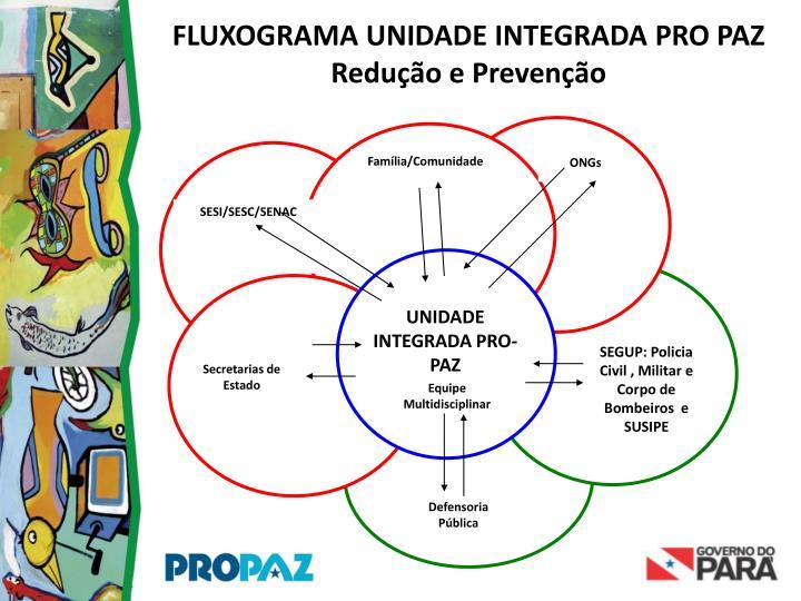 FLUXOGRAMA UNIDADE INTEGRADA PRO PAZ   Redução e Prevenção
