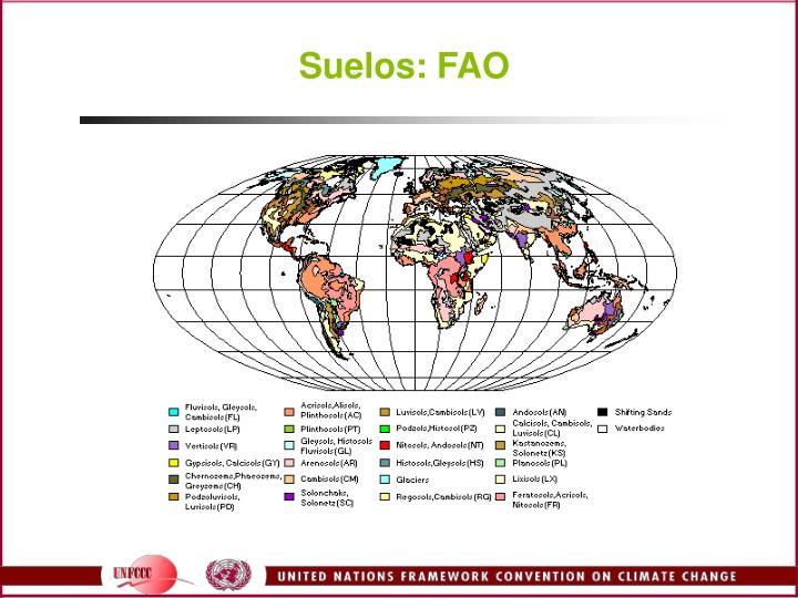 Suelos: FAO