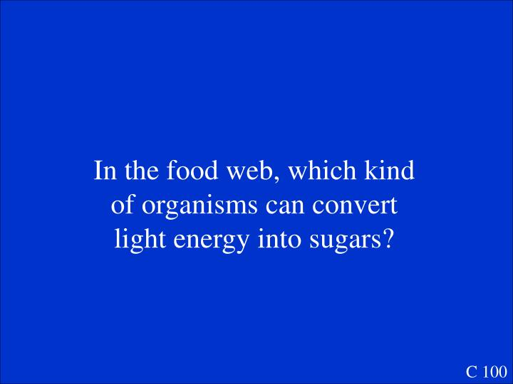 In the food web, which kind of organisms can convert light energy into sugars?