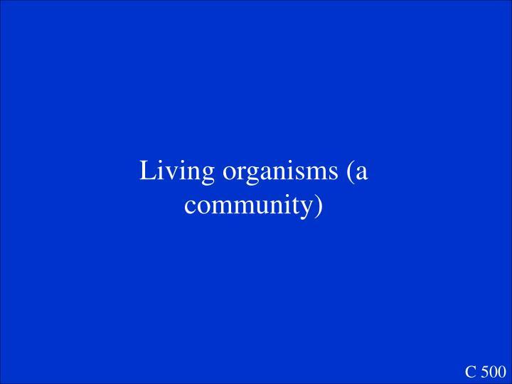 Living organisms (a community)