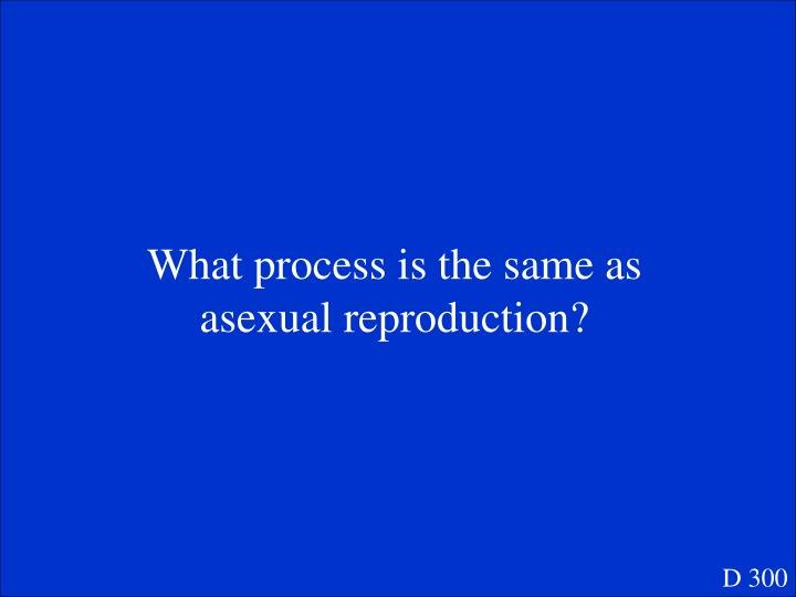 What process is the same as asexual reproduction?
