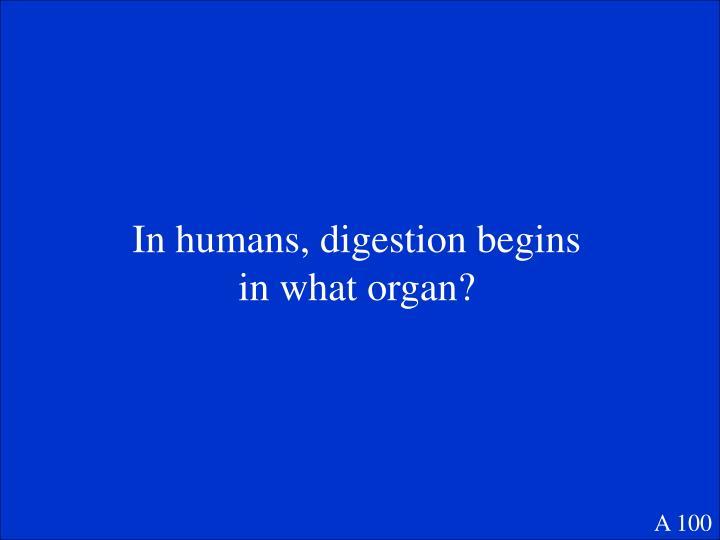 In humans, digestion begins in what organ?