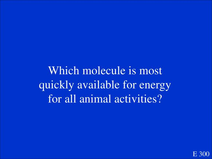 Which molecule is most quickly available for energy for all animal activities?