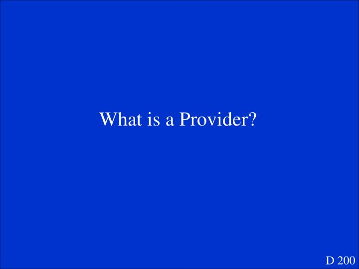 What is a Provider?
