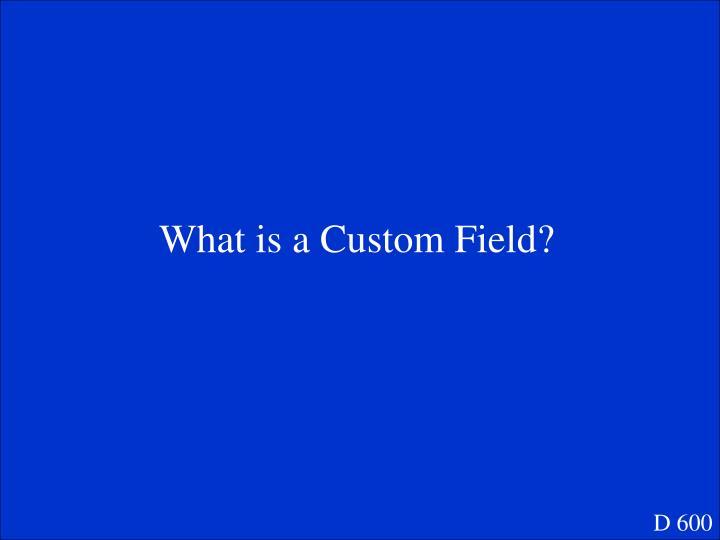 What is a Custom Field?