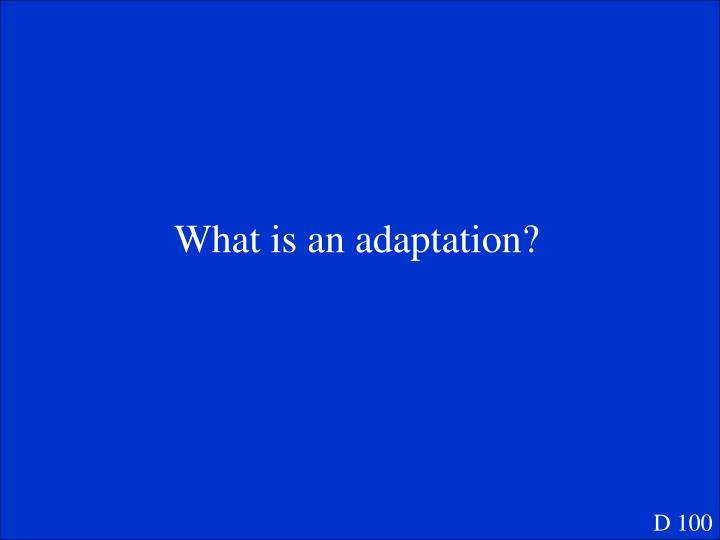 What is an adaptation?
