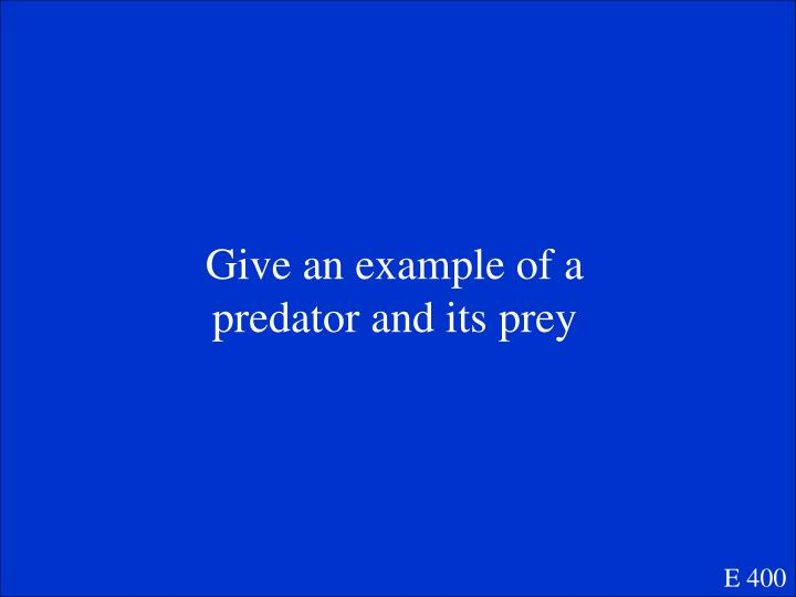 Give an example of a predator and its prey
