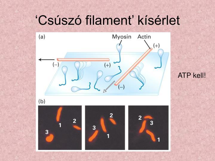 'Csúszó filament' kísérlet