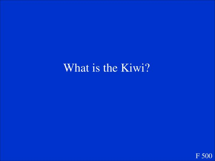 What is the Kiwi?