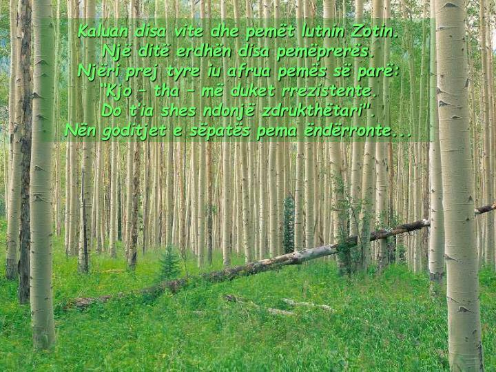 Kaluan disa vite dhe pemët lutnin Zotin.