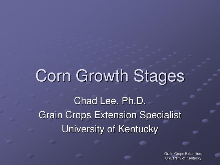 Corn growth stages