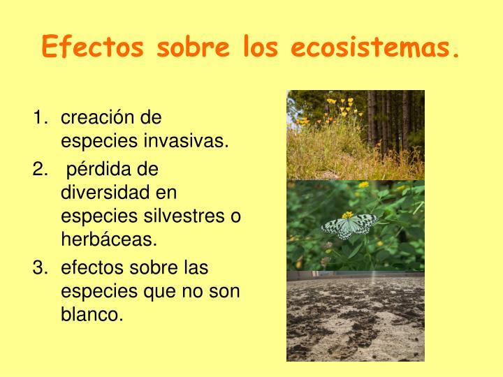 Efectos sobre los ecosistemas.