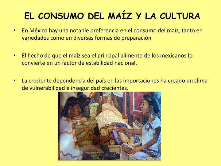 EL CONSUMO DEL MAÍZ Y LA CULTURA