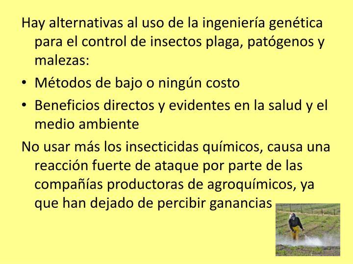 Hay alternativas al uso de la ingeniería genética para el control de insectos plaga, patógenos y malezas: