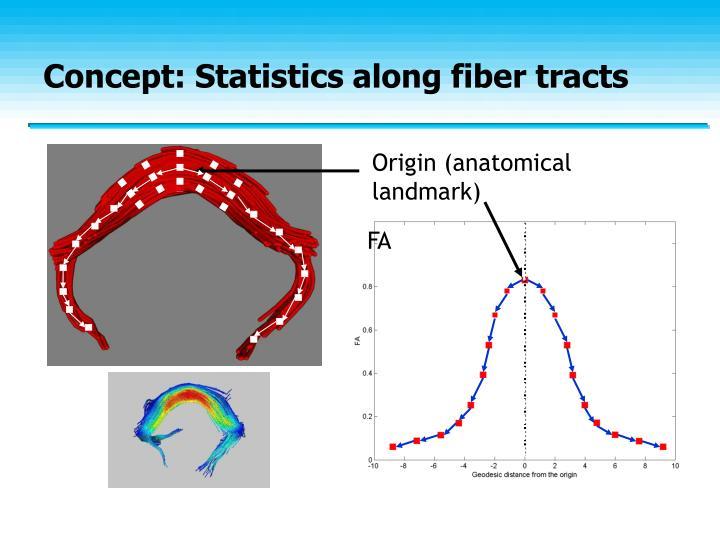 Concept: Statistics along fiber tracts