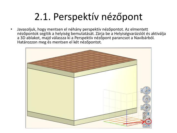2.1. Perspe