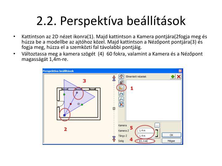 2.2. Perspe