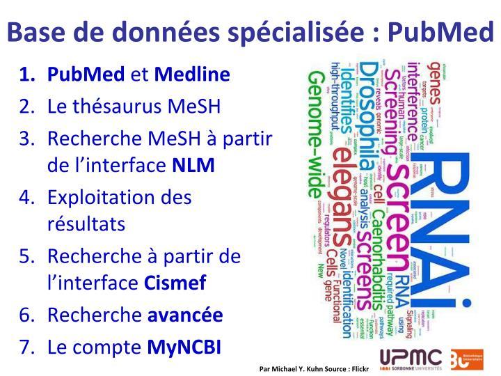 Base de données spécialisée : PubMed