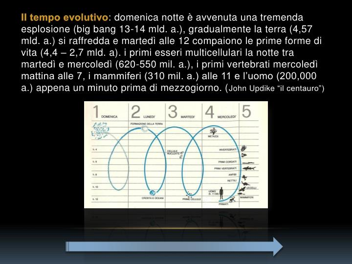 Il tempo evolutivo