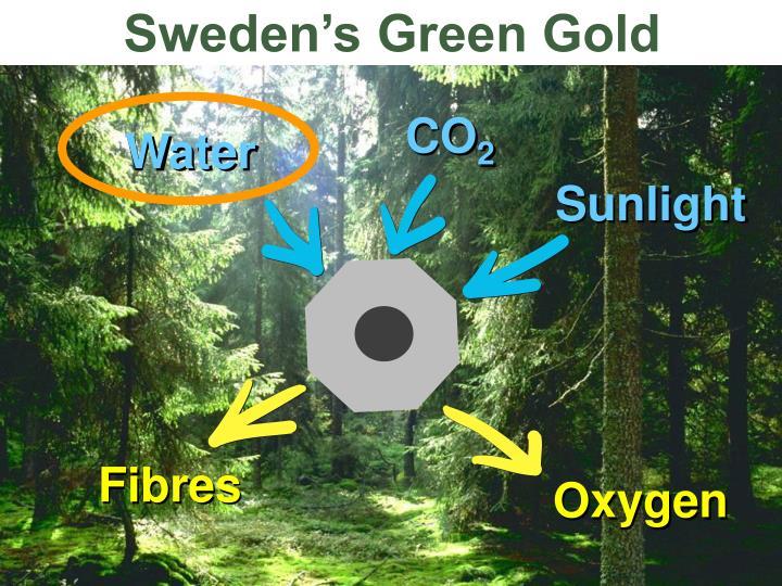 Sweden's Green Gold