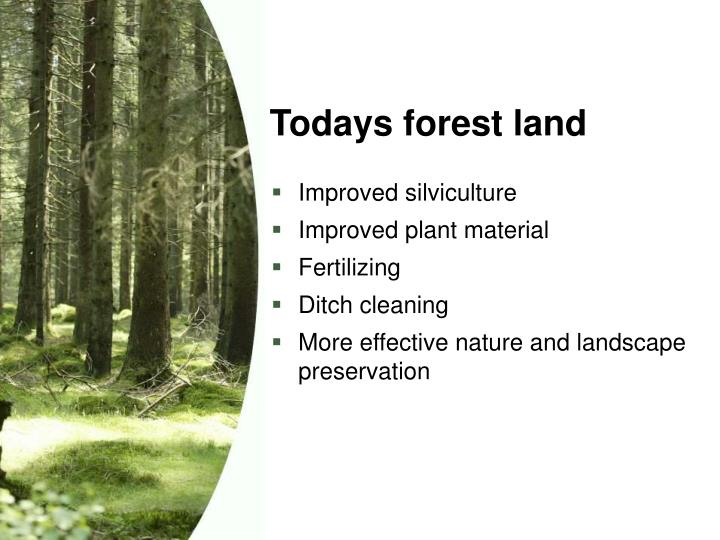 Todays forest land