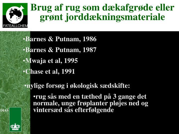 Brug af rug som dækafgrøde eller grønt jorddækningsmateriale