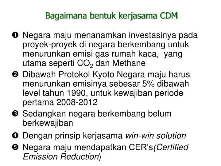 Bagaimana bentuk kerjasama CDM