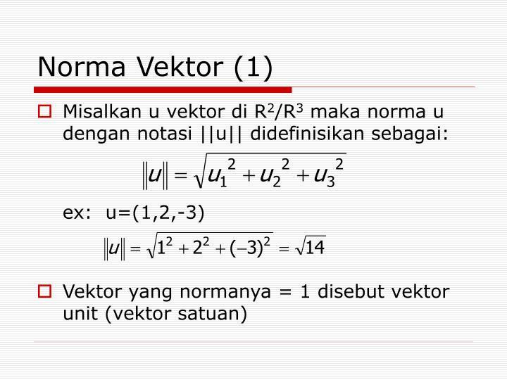 Norma Vektor (1)