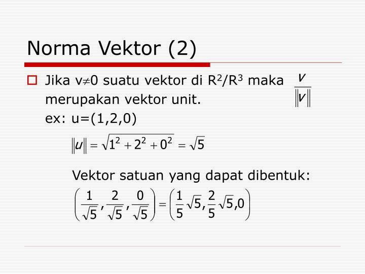 Norma Vektor (2)