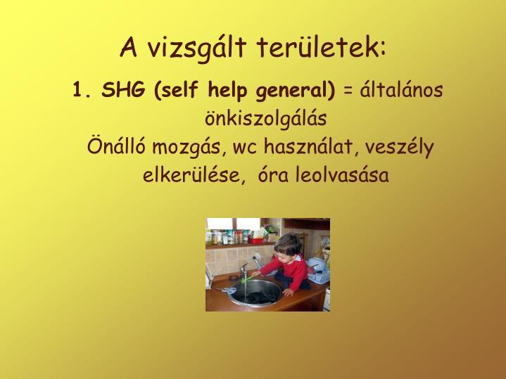 1. SHG (self help general)