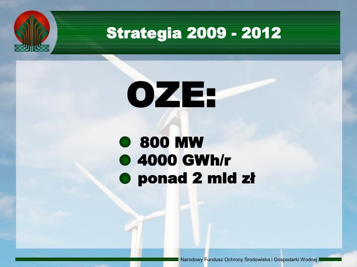 Strategia 2009 - 2012
