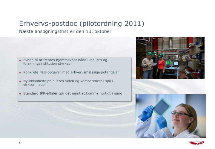 Erhvervs-postdoc (pilotordning 2011)