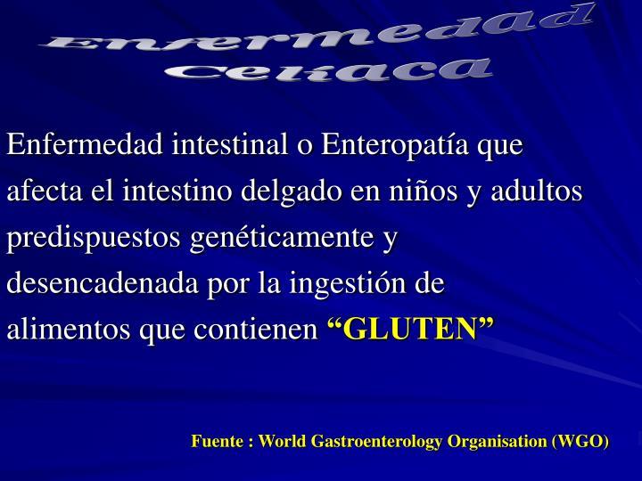 Enfermedad intestinal o Enteropatía que