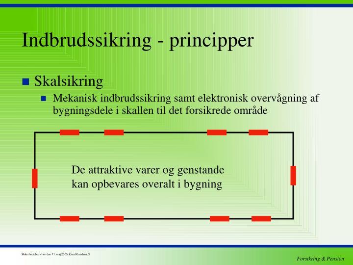 Indbrudssikring - principper