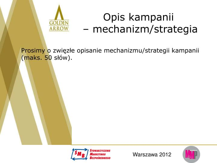 Opis kampanii mechanizm strategia