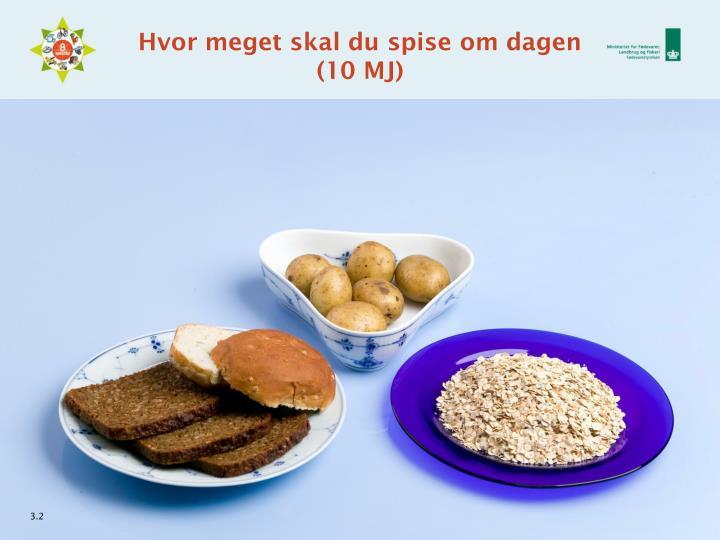 Hvor meget skal du spise om dagen