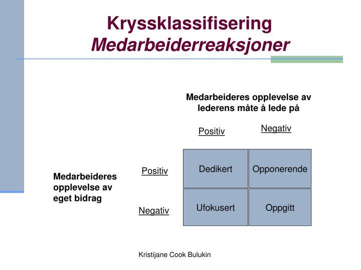 Kryssklassifisering